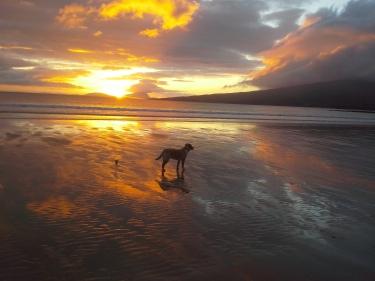 Mulranny Beach at Sunset
